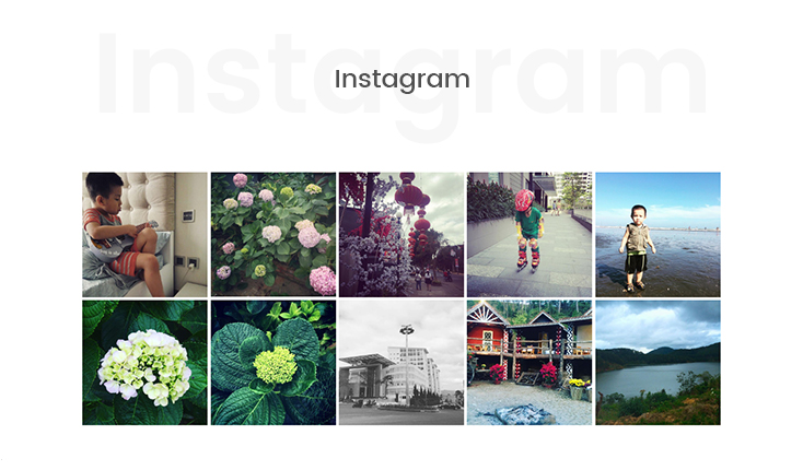 Instagram photos feed suppoprted